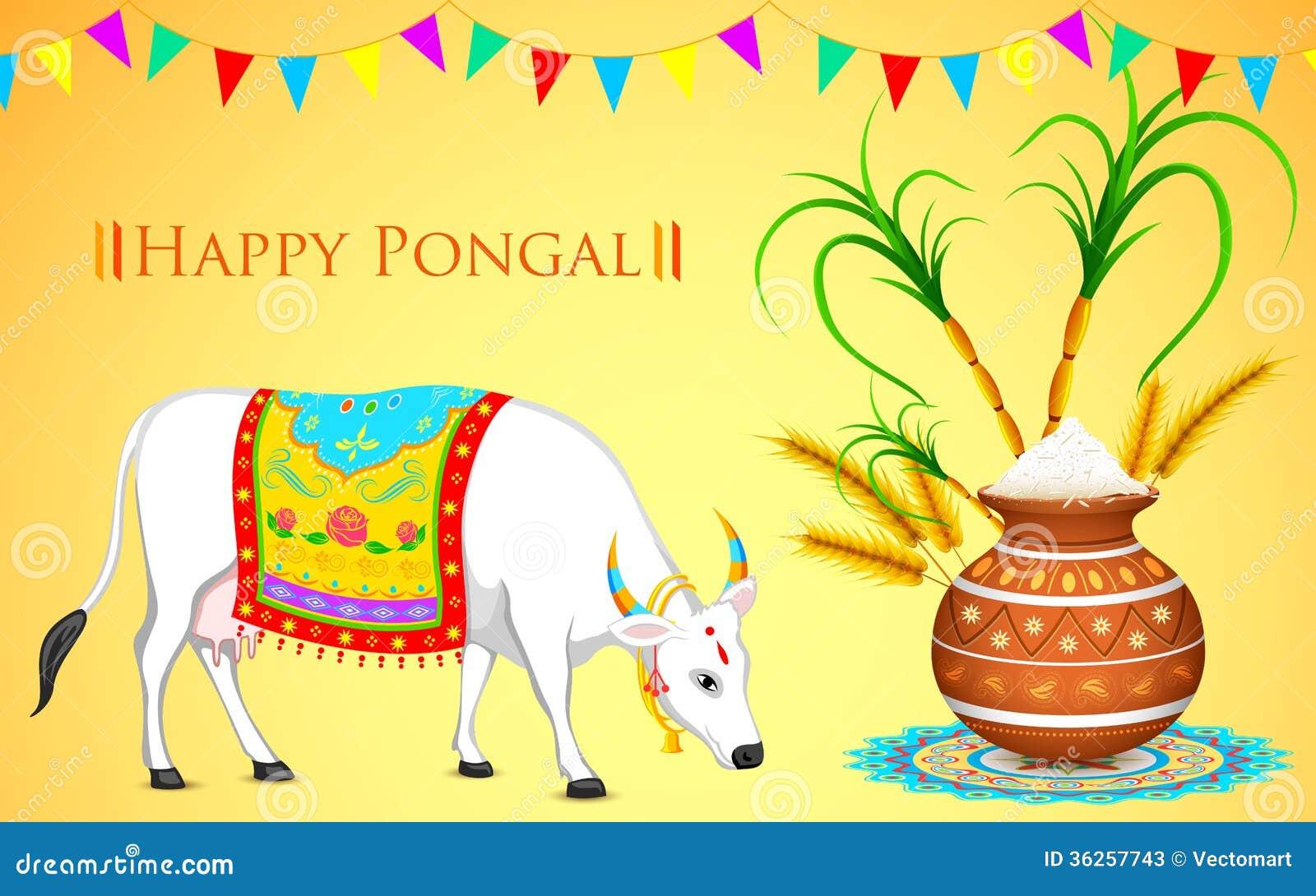 Happy pongal stock vector illustration of grain culture 36257743 illustration of happy pongal greeting background m4hsunfo