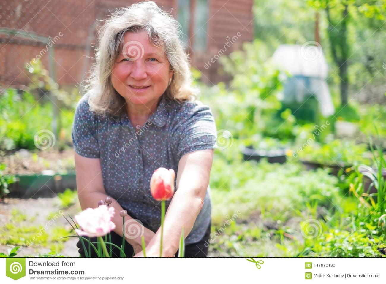Happy senior caucasian woman working with flowers blooming at summer garden.