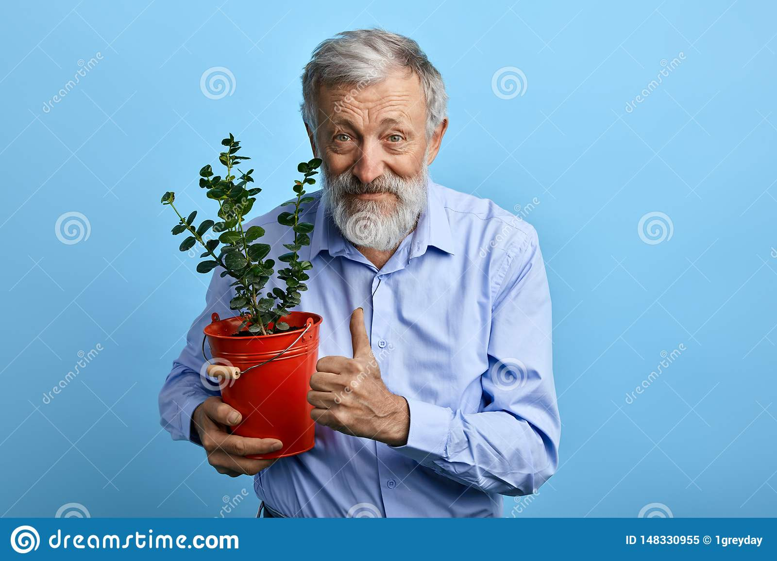 Happy senior man in blue shirt holding flower pot and showing thumb up