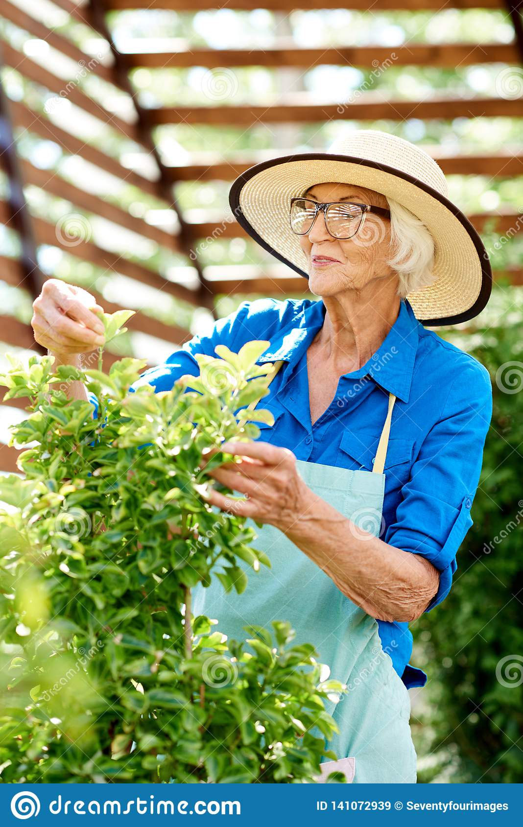 Happy Senior Woman Caring for Plants