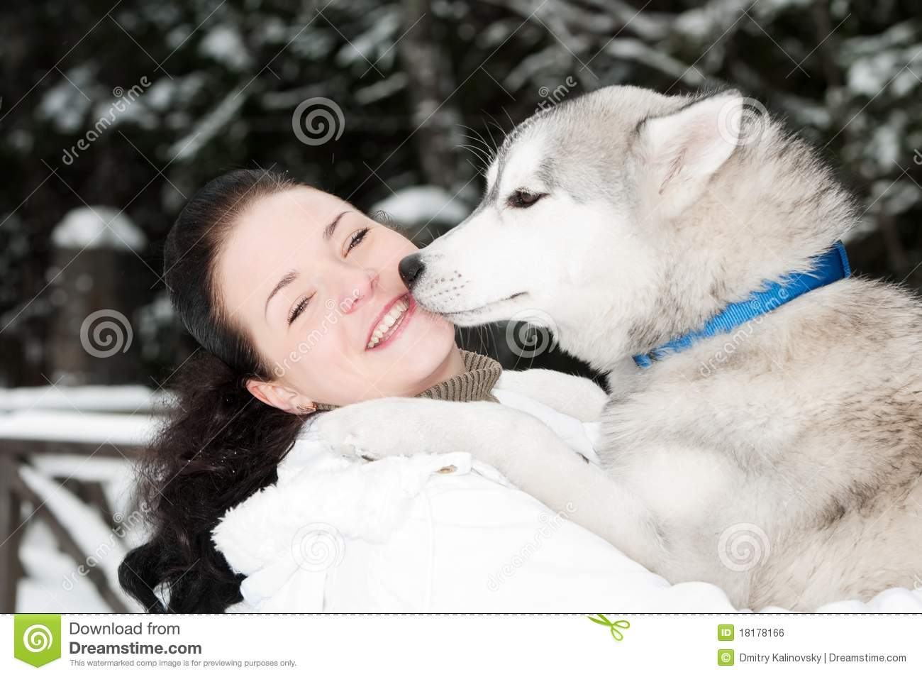 happy siberian husky owner with dog royalty free stock