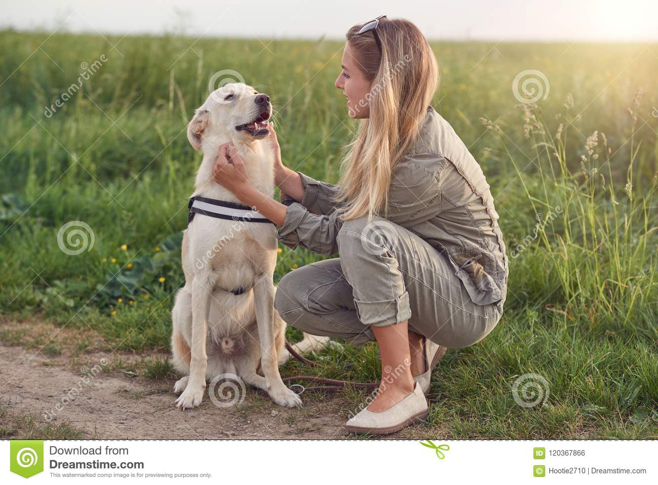 Woman Wearing Dog Harness Wire Center Circuitdiagram Afrilec Generator Fixya Happy Smiling Golden A Walking Sitting Facing Rh Dreamstime Com Flickr