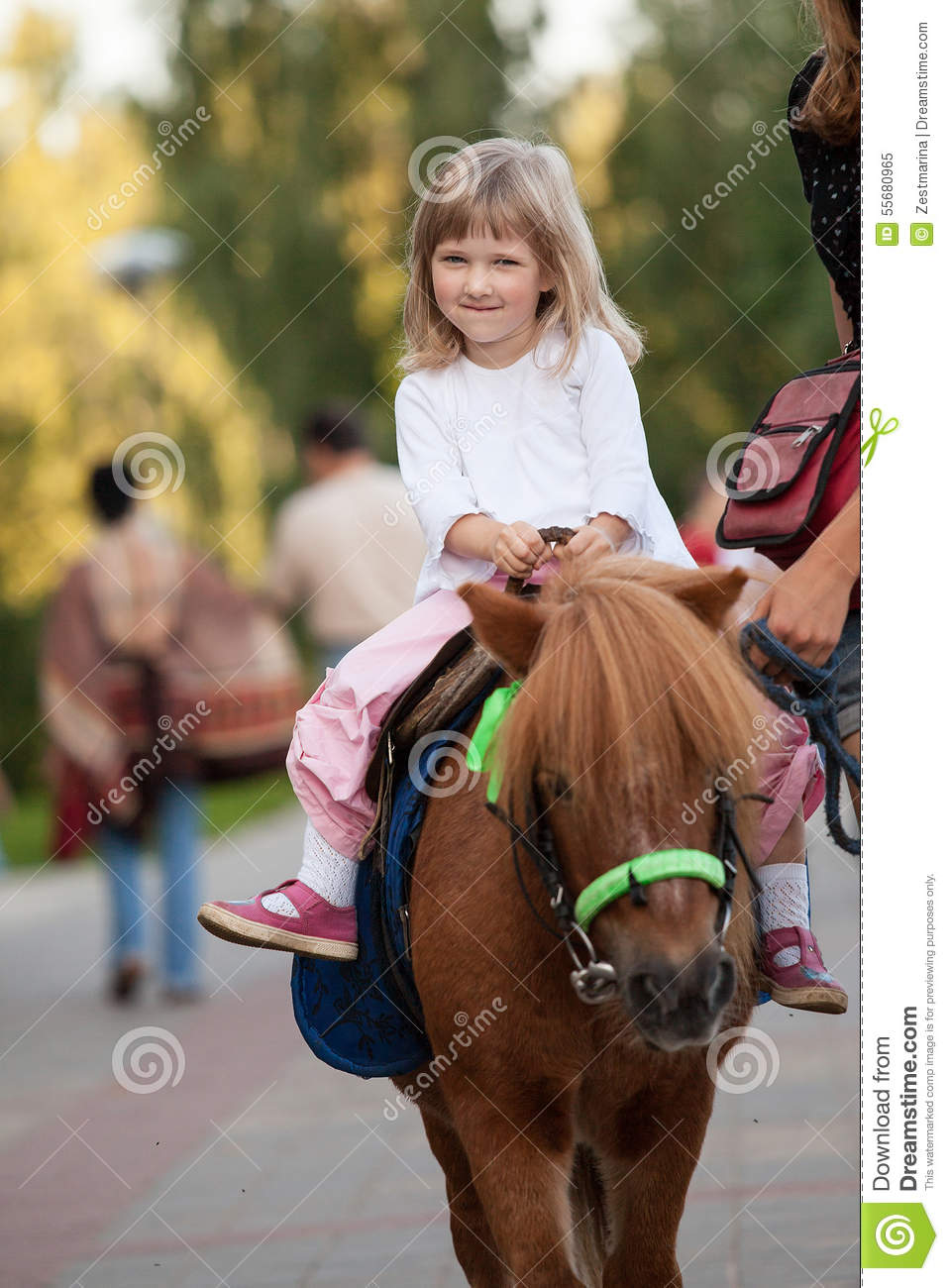 Happy smiling little girl on a pony