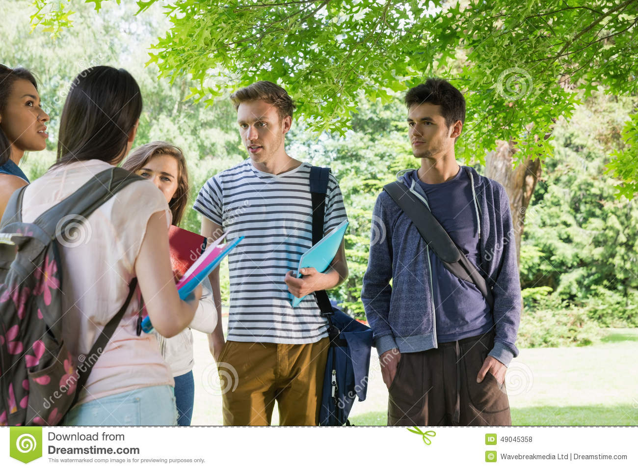 Happy students chatting together outside stock photo image 49045358