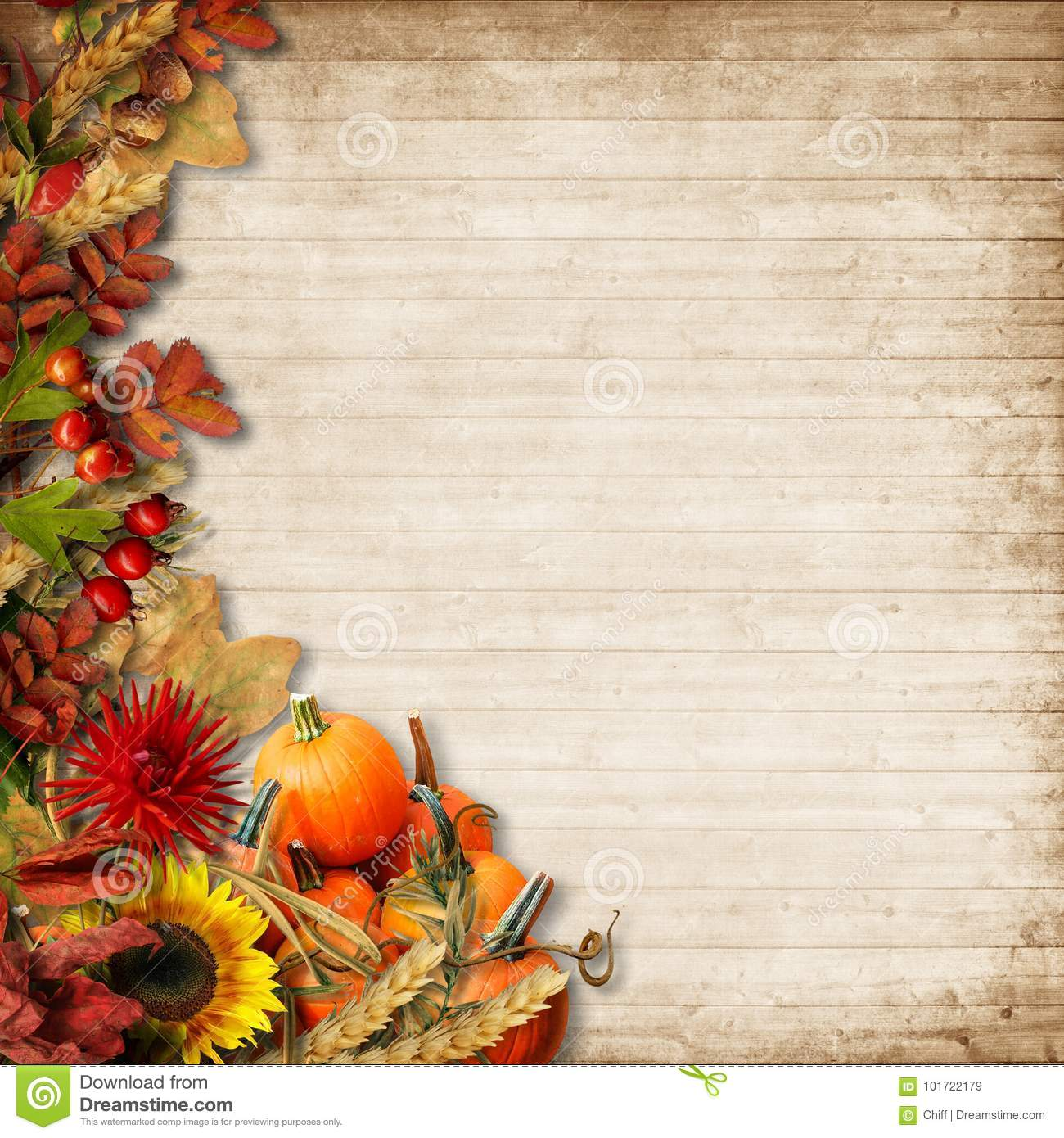 Happy Thanksgiving Card. Autumn Background