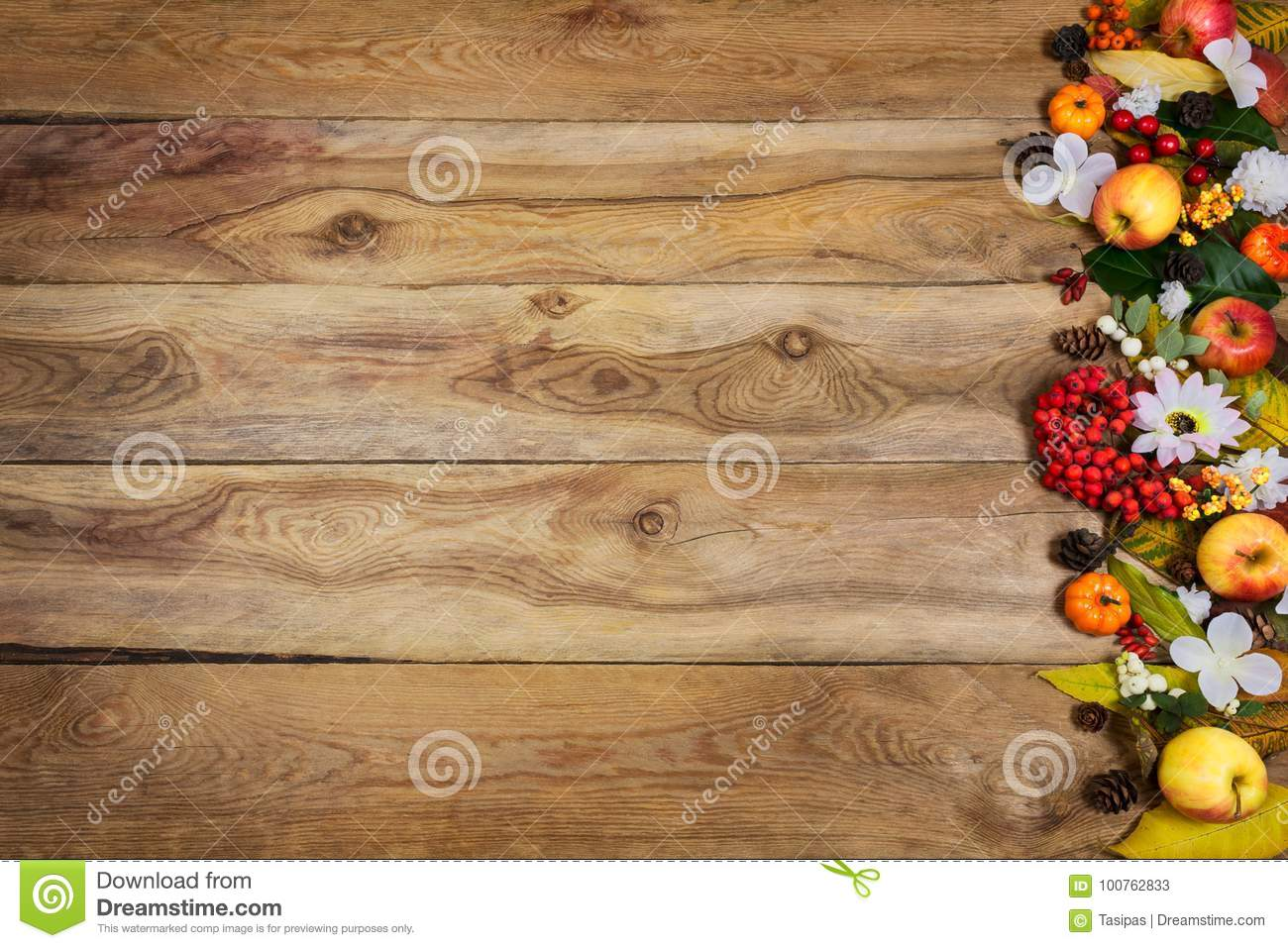 Happy Thanksgiving Greeting Background With Pumpkins Apples Berries Leaves And White Flowers On The Right Side Of Rustic Wooden Table Copy Space