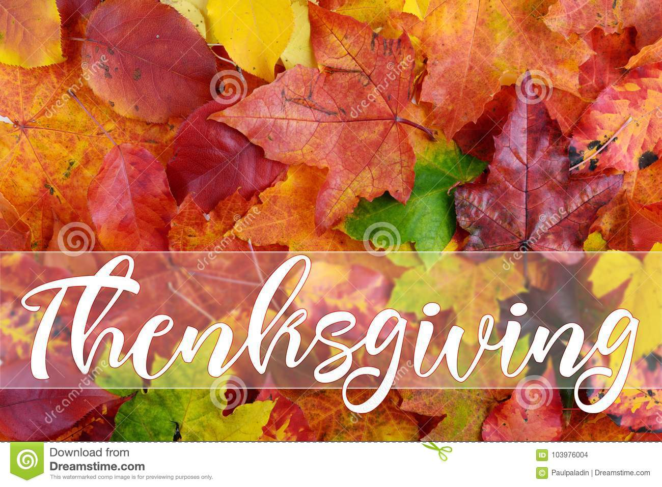 Happy thanksgiving greeting card message stock photo image of download comp m4hsunfo