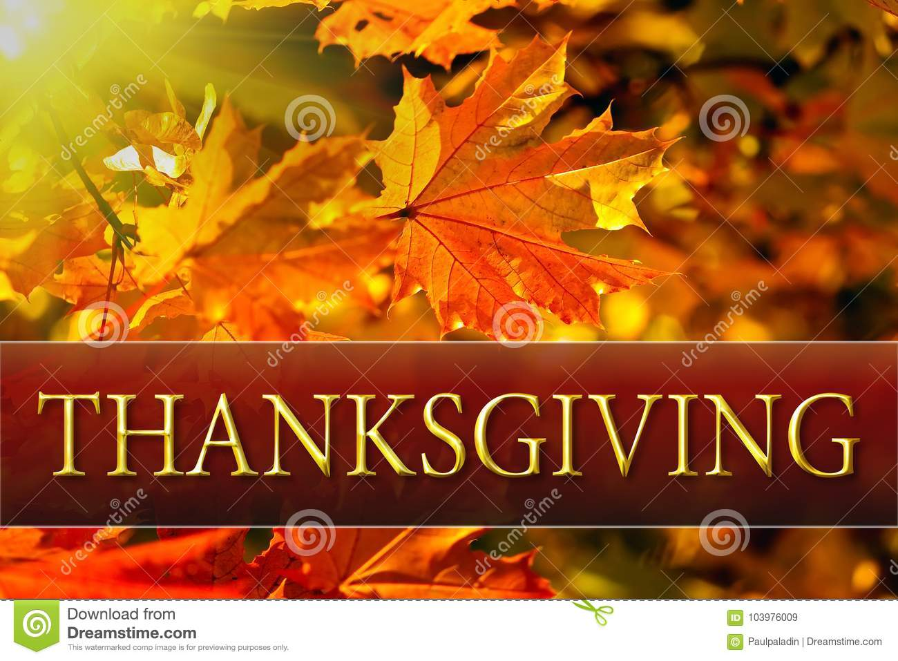 Happy thanksgiving greeting card message stock image image of happy thanksgiving greeting card message m4hsunfo