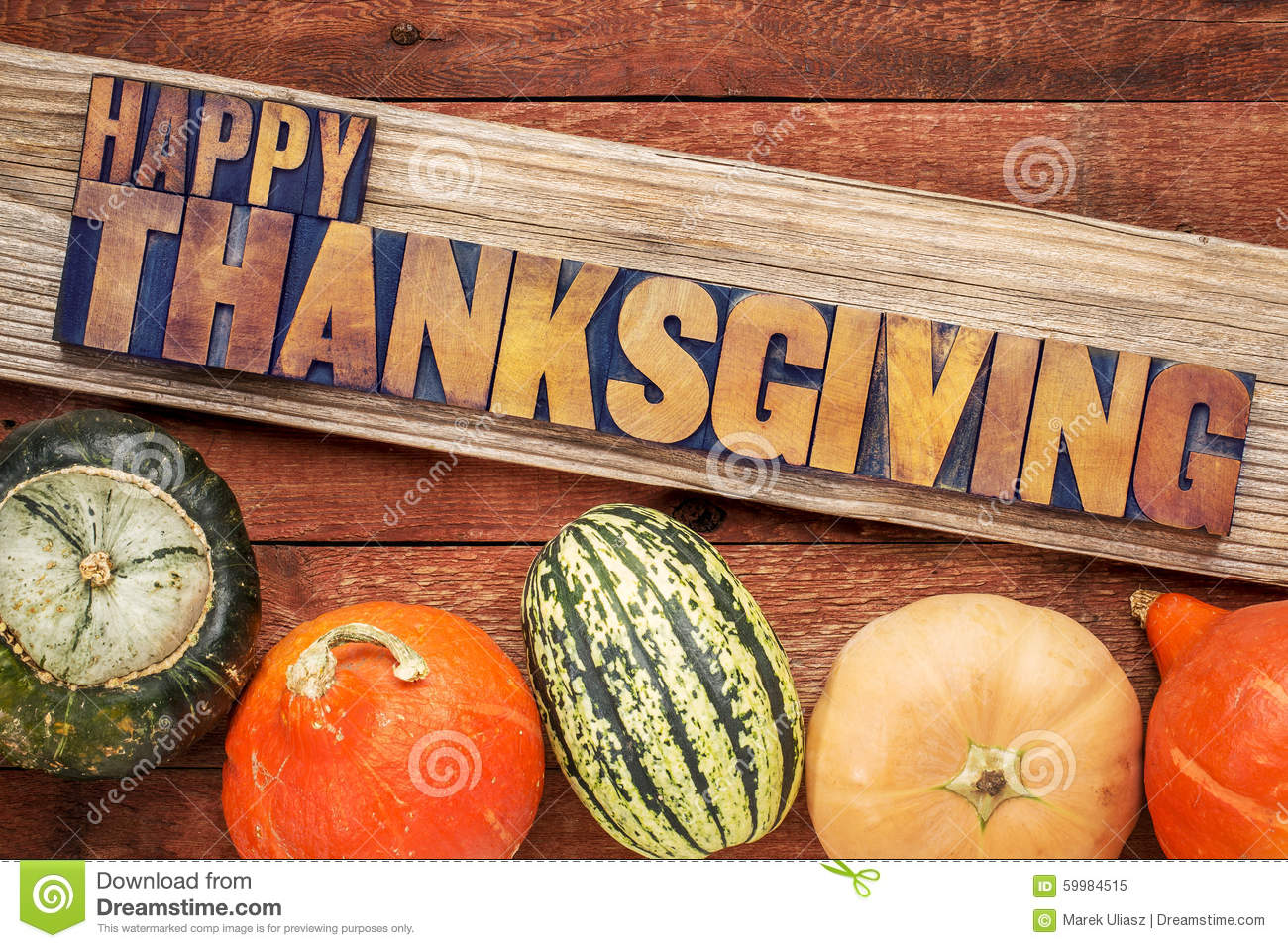Happy Thanksgiving Greeting Card