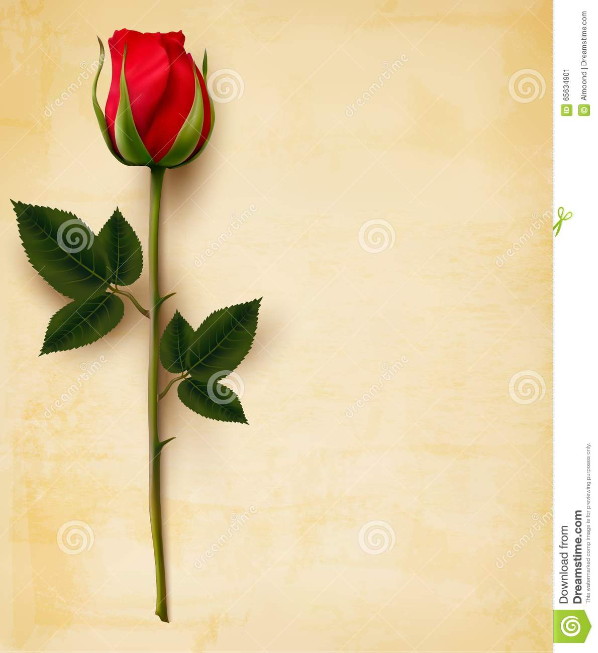 red red rose essay Analysis of burn's poem a red, red rose - analysis of burn's poem a red, red rose 'a red, red rose', was first published in 1794 in a selection of scots songs, edited by peter urbani.