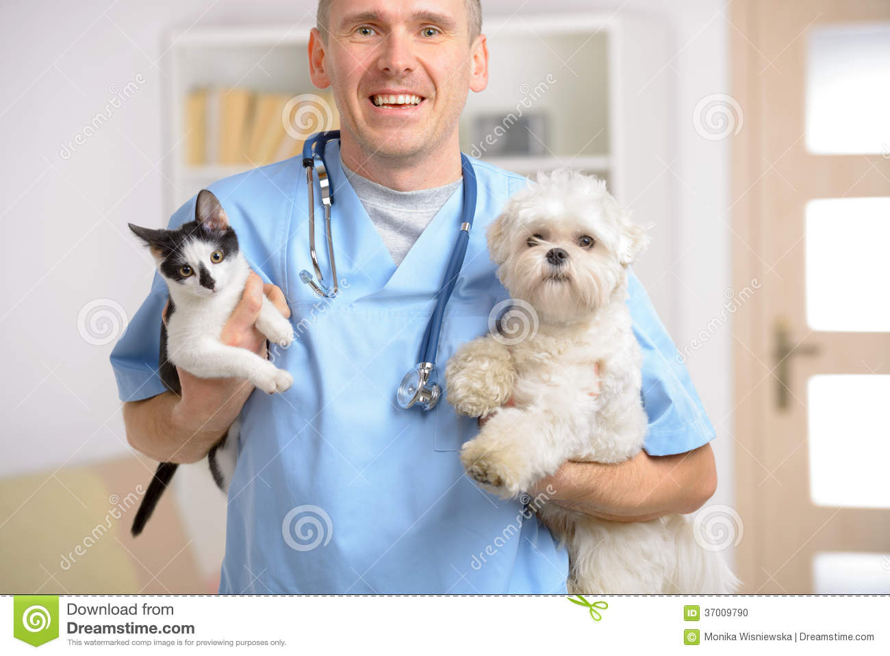 Happy Vet With Dog And Cat Stock Photo Image 37009790