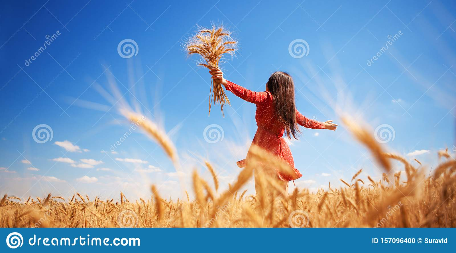 Happy woman enjoying the life in the field Nature beauty, blue sky and field with golden wheat. Outdoor lifestyle. Freedom concept
