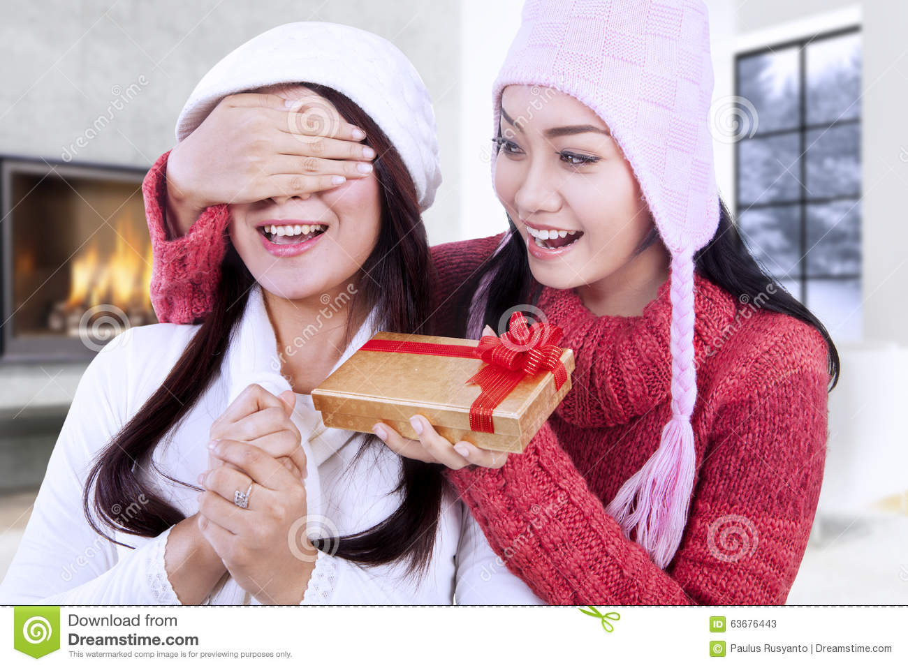 Happy Woman Giving Christmas Gift On Her Friend Stock Image - Image ...