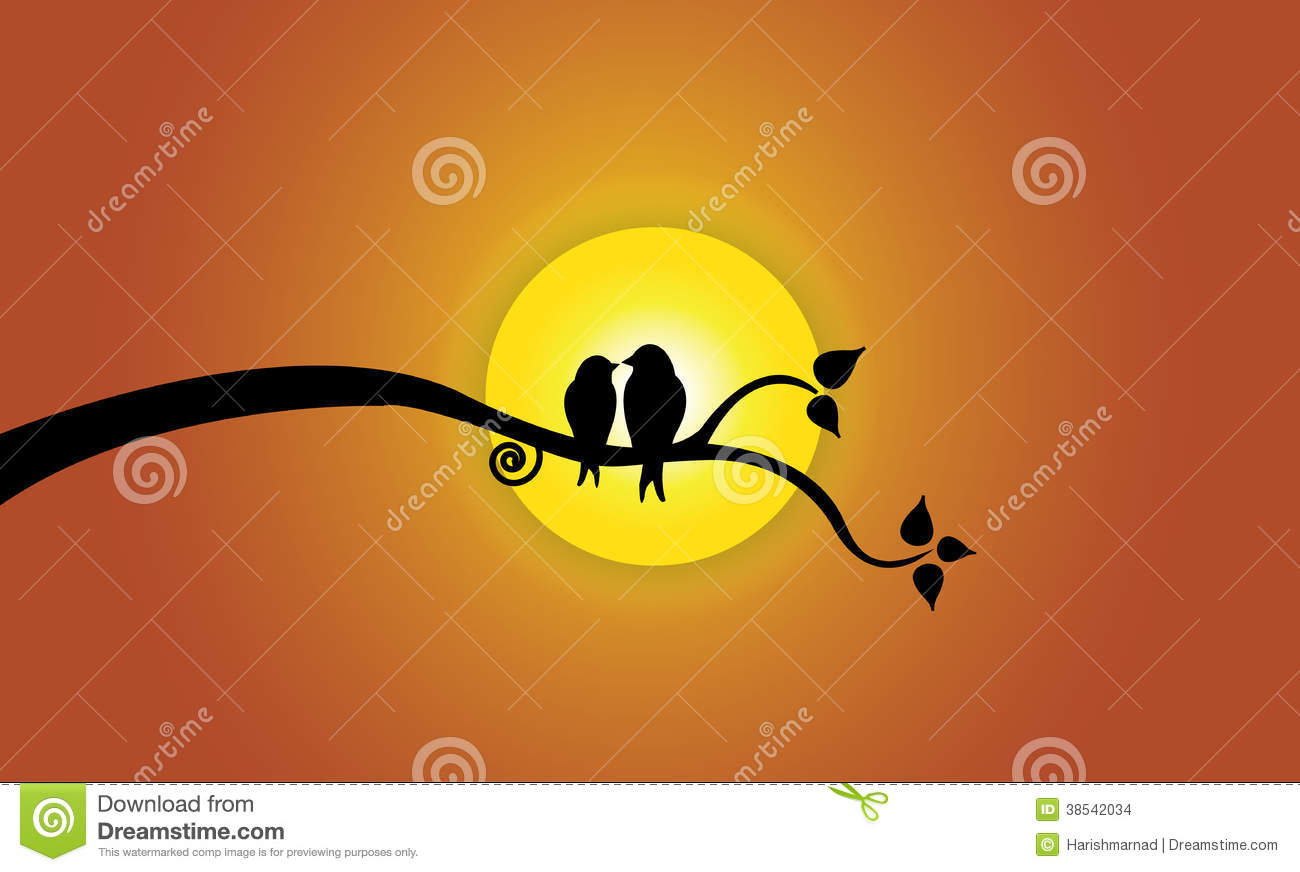 Happy Young Love Birds On Tree Branch During Sunse Stock Images