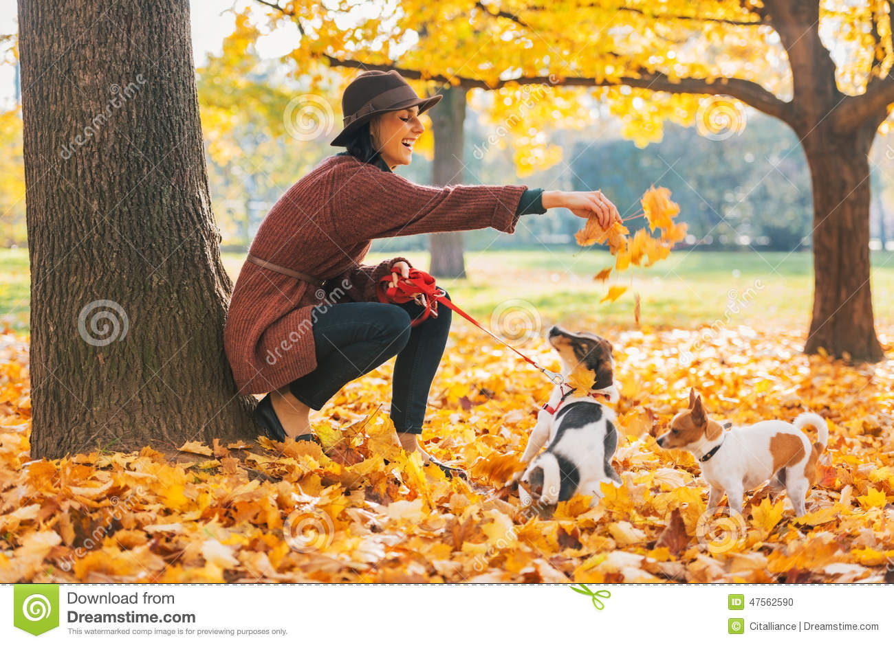 Happy young woman playing with dogs outdoors