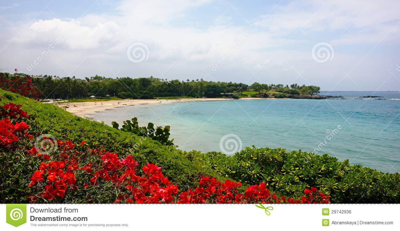Hapuna Beach State Park Stock Photo Image Of Relaxation