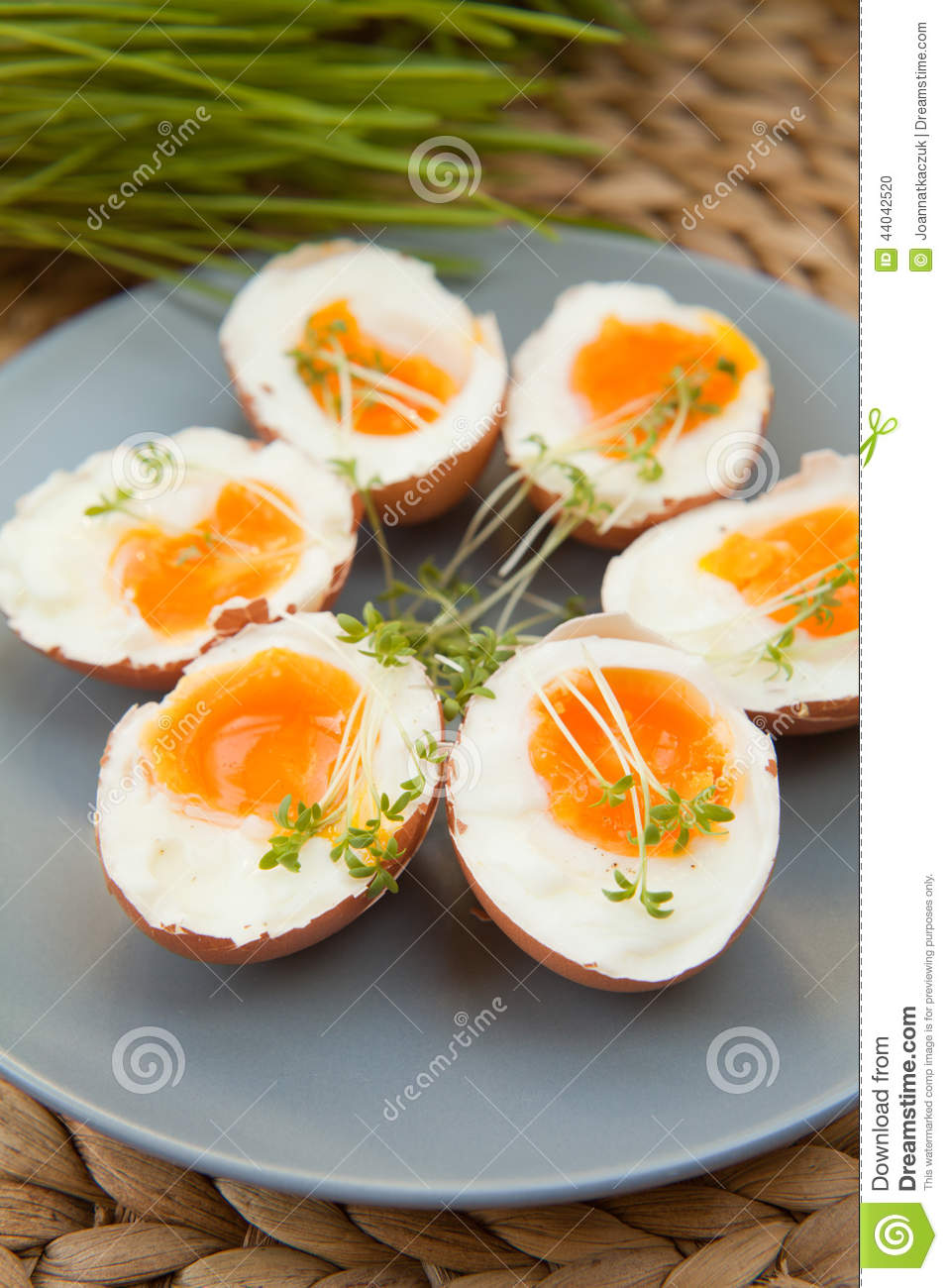 Hard Boiled Eggs Stock Photo Image Of Cress Whole 44042520