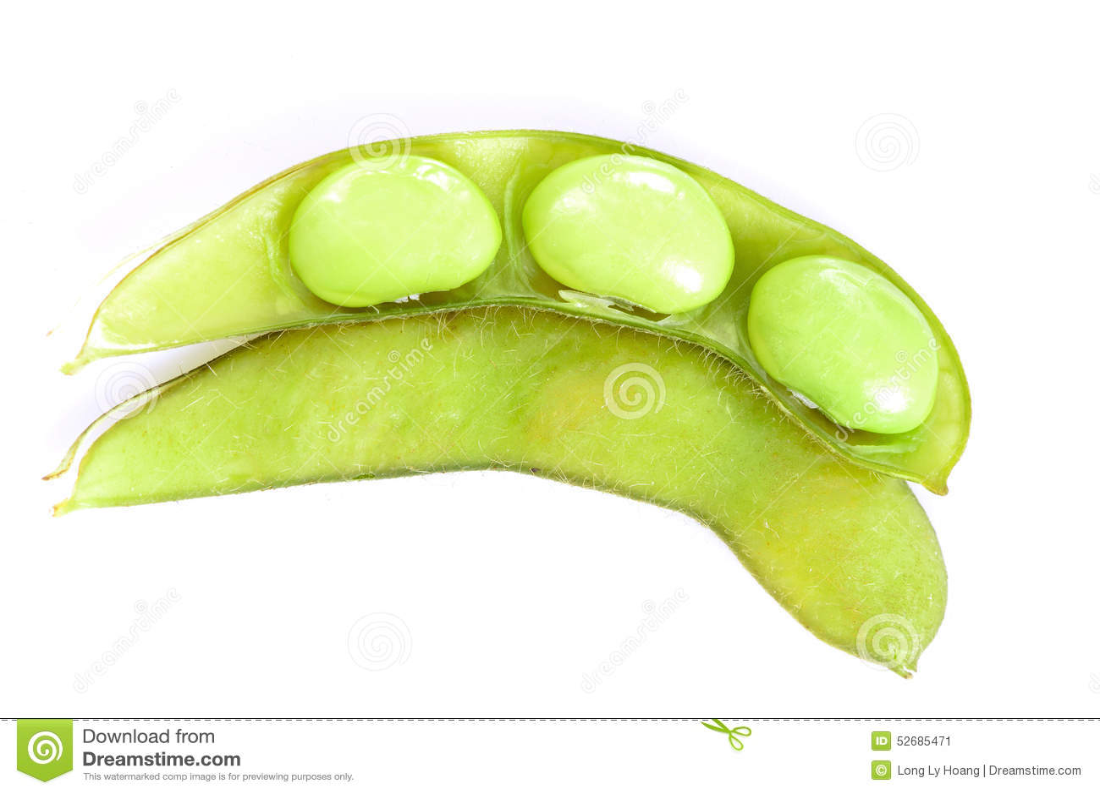 Haricot de soja