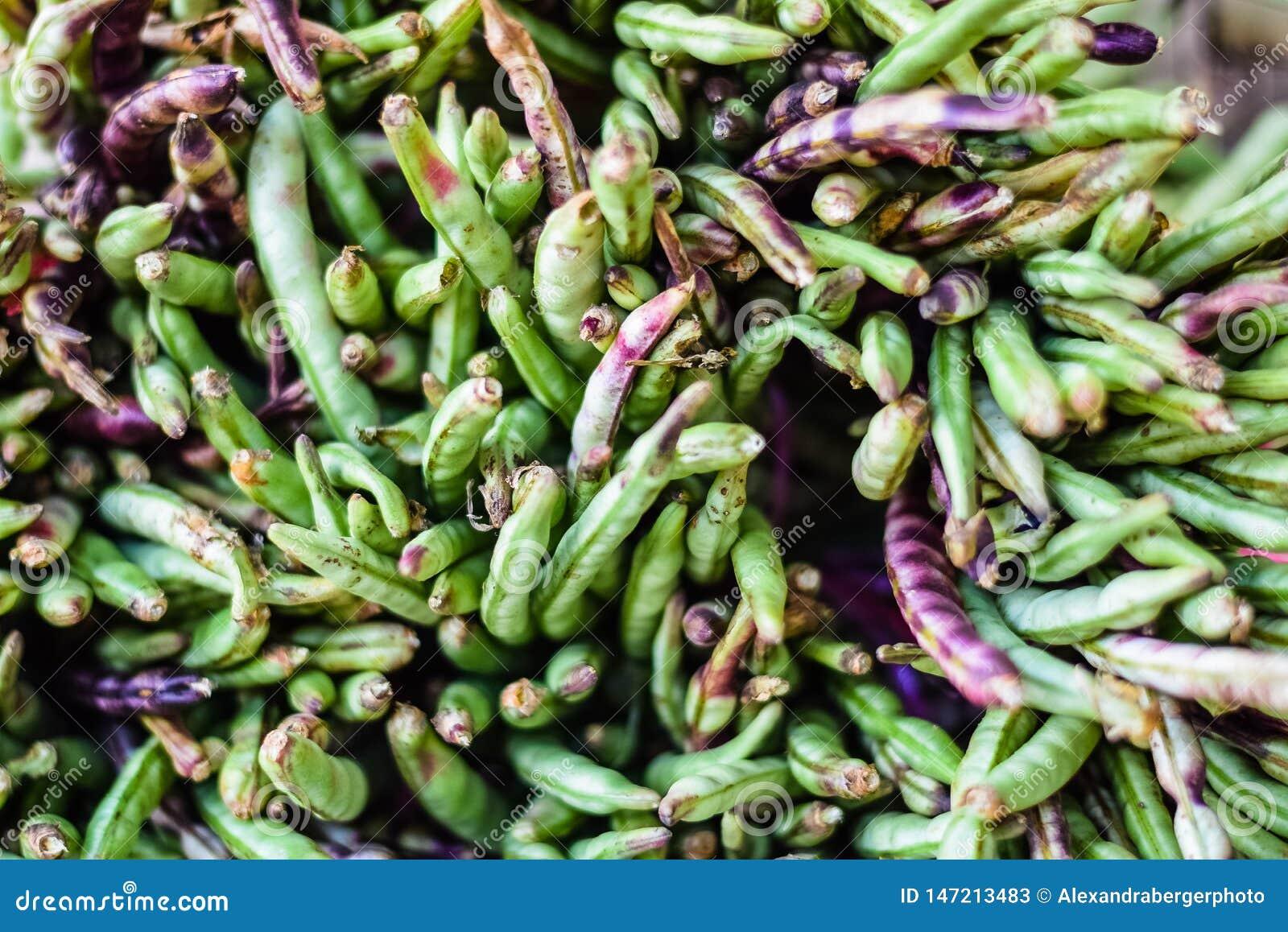 Haricots sauvages frais sur le marché