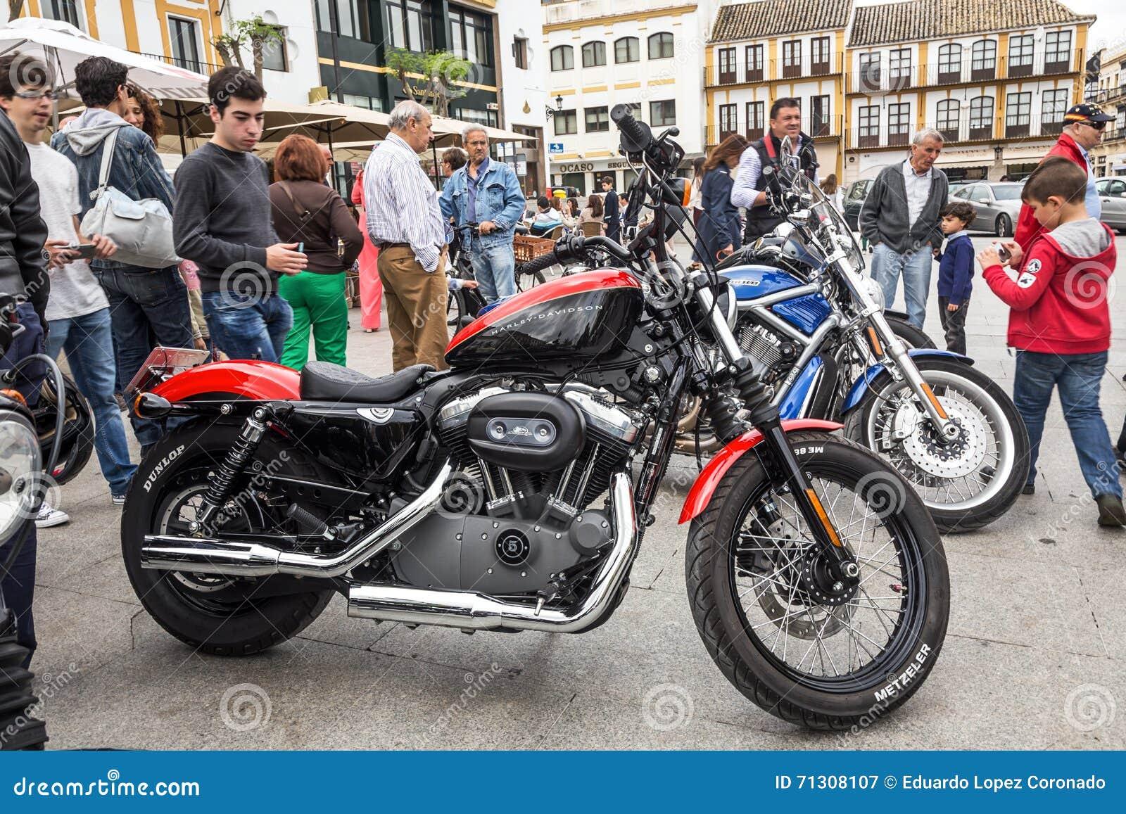 Harley Davidson motorcycles details
