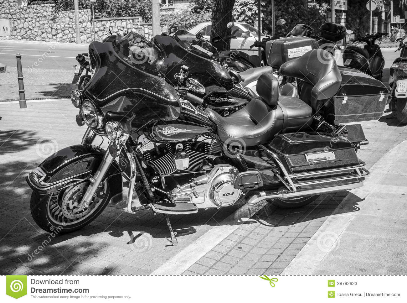 Harley Davidson Stock: Harley Davidson Motorcycles Editorial Stock Photo