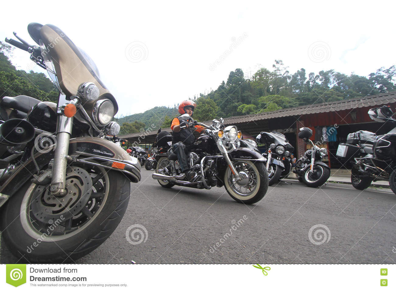 Harley lovers gather