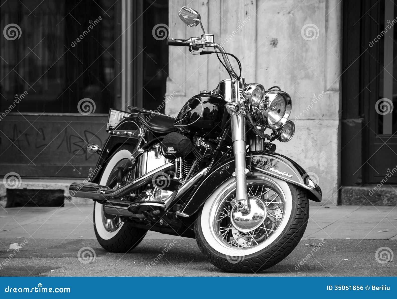 Harley noir