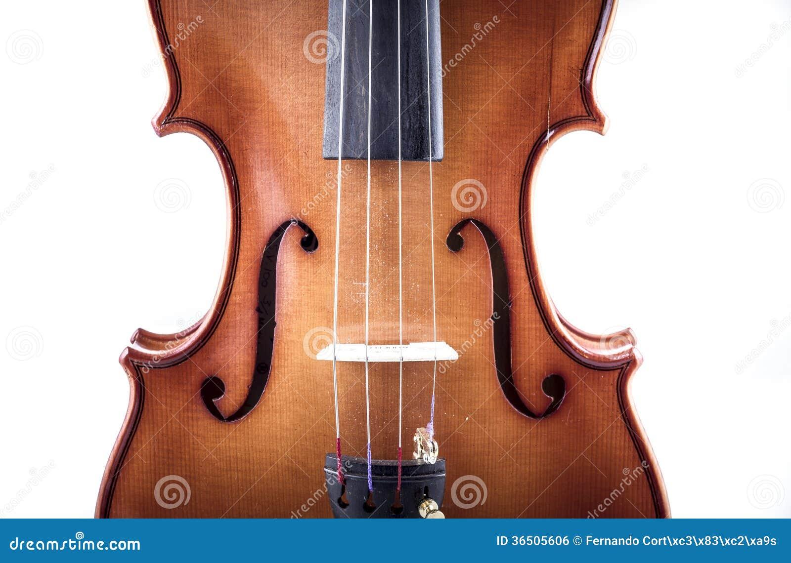 Harmonia, opinião dianteira do violino isolada no branco, vintage
