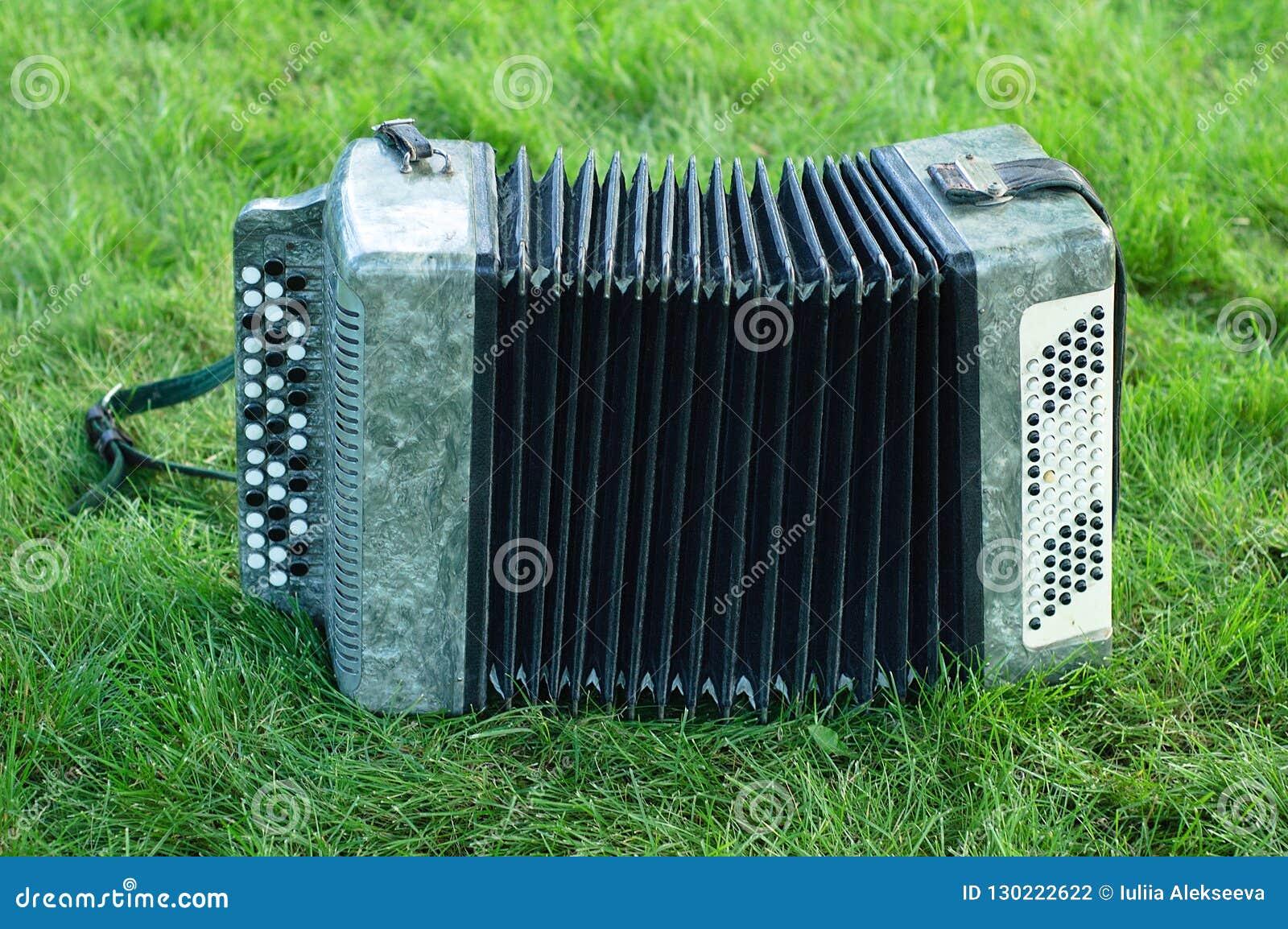 Harmonika op groen gras