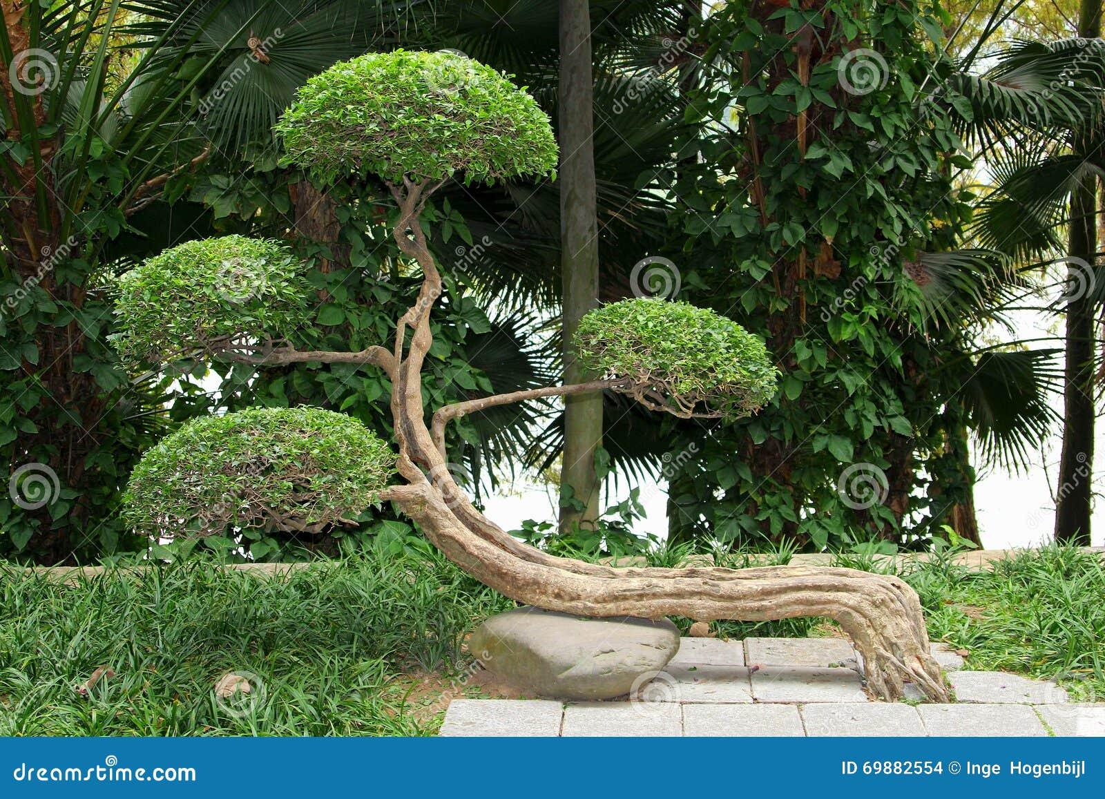 Zen chinese botanical gardens china stock photo image for Chinese landscape design
