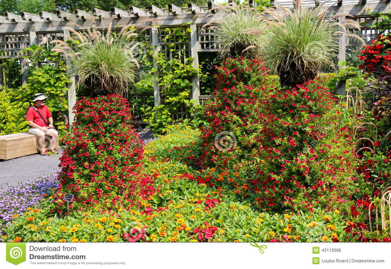 In harmony with nature editorial photo. Image of flowers - 43119396