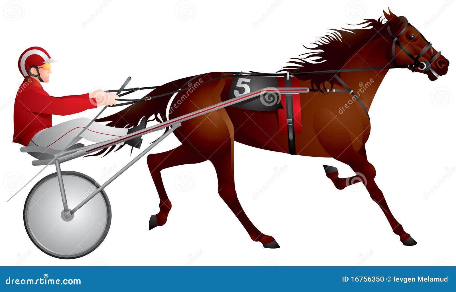 Harness racing, horse, race