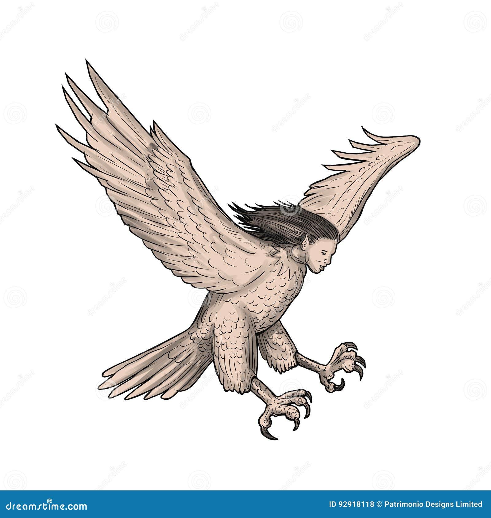harpy swooping tattoo stock illustration image of harpy 92918118. Black Bedroom Furniture Sets. Home Design Ideas