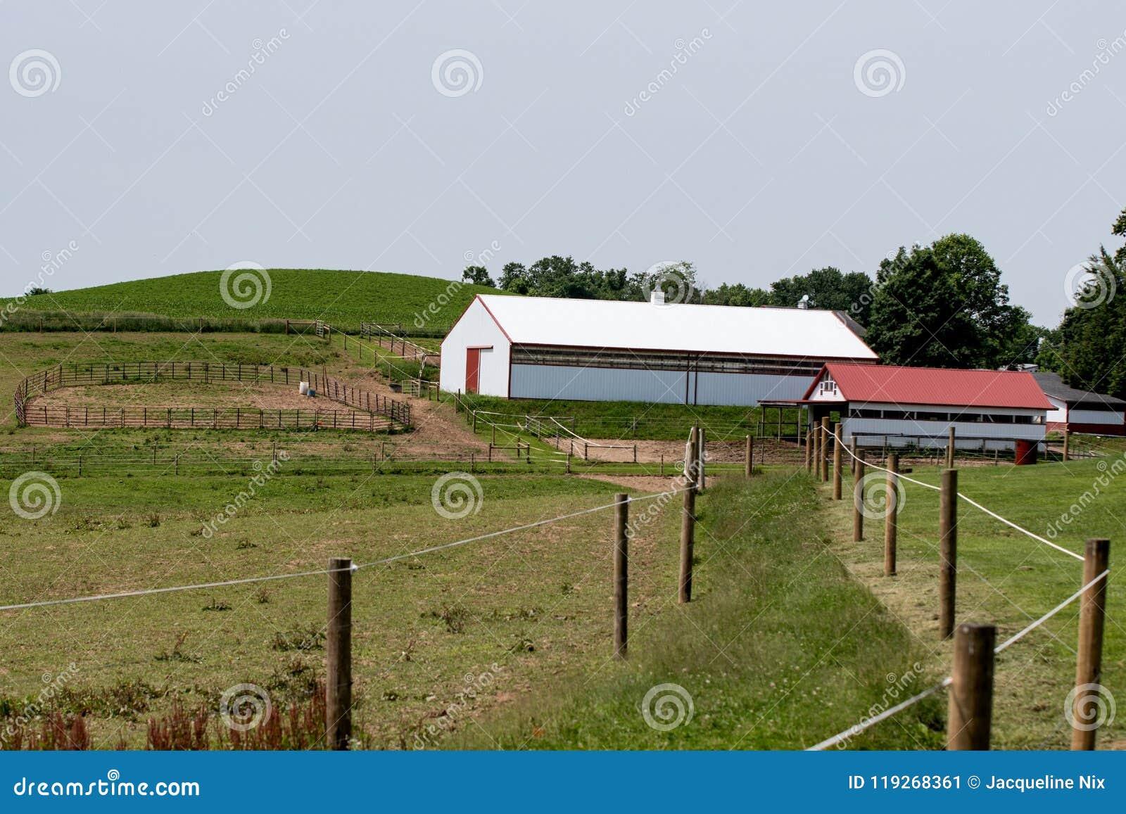 Horse farm in Ohio editorial photo. Image of appalachia - 119268361