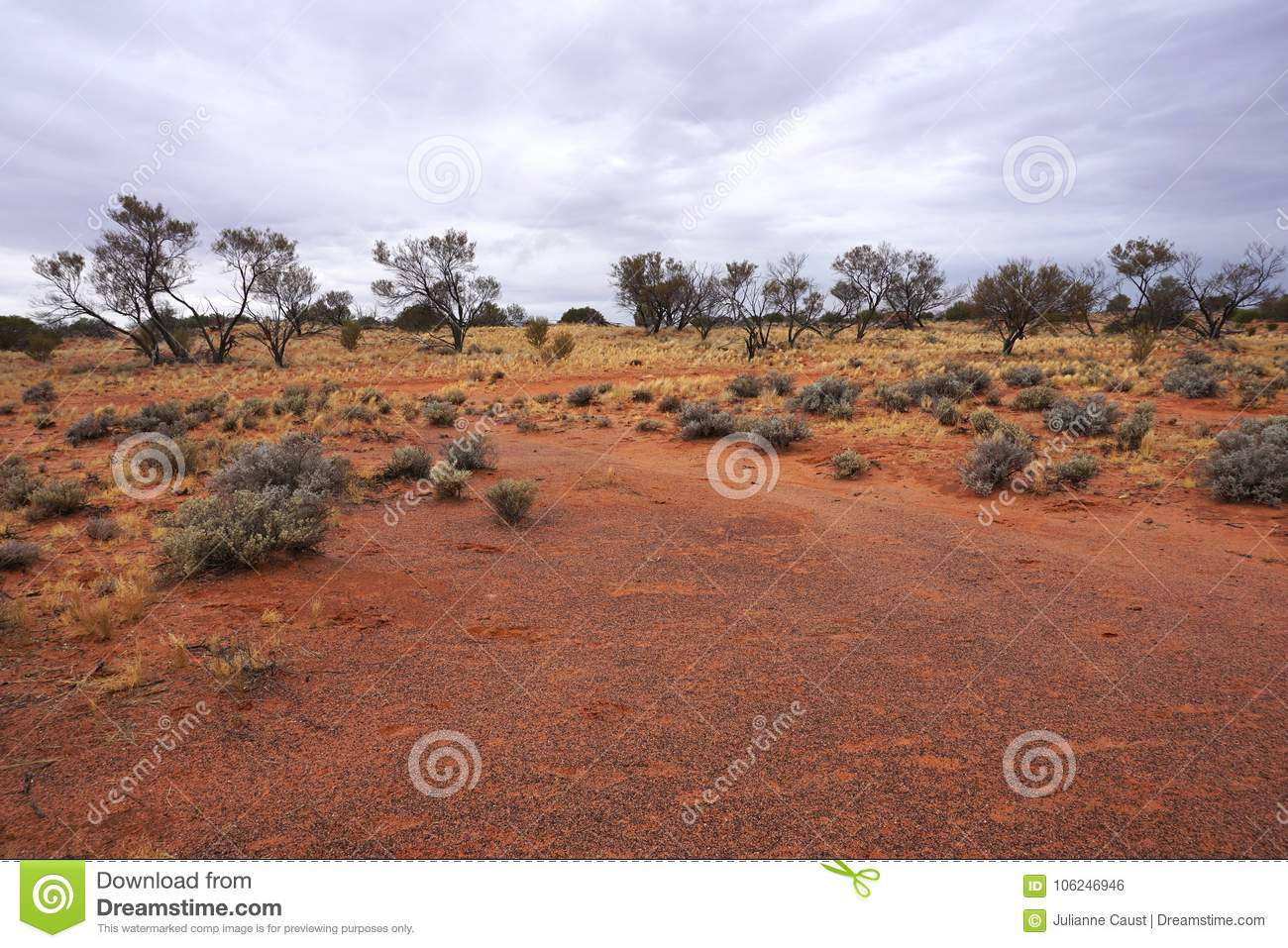 Arid Lands, Roxy Downs, Outback South Australia Stock Photo - Image ...