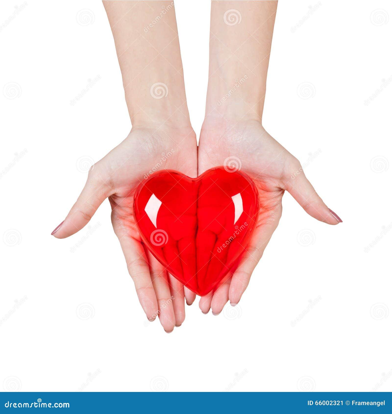 Hart in de handen op witte achtergrond worden geïsoleerd die