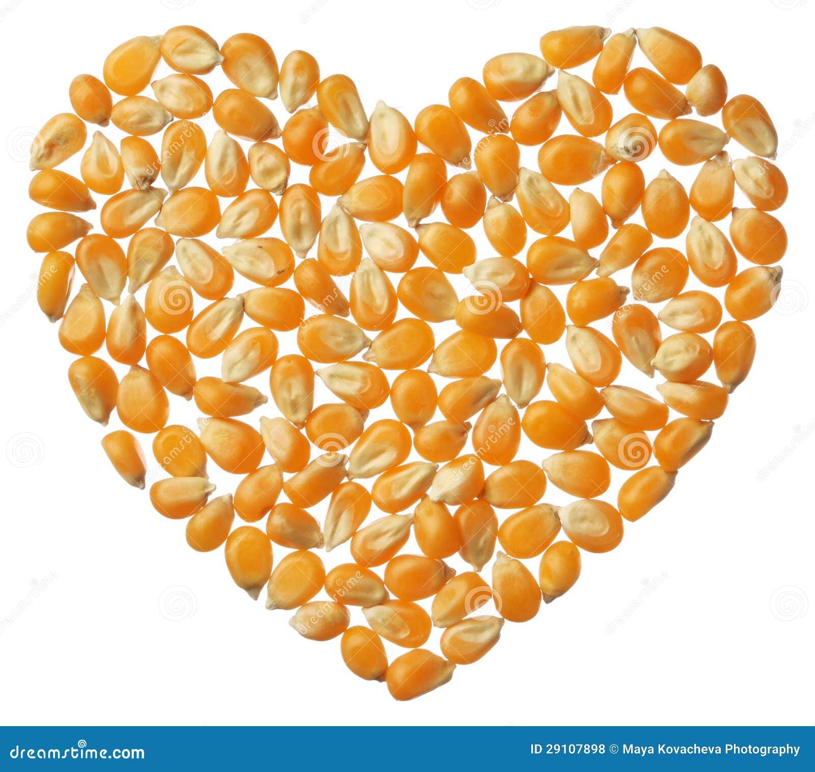 Hart van de pitten van de Popcorn die op witte achtergrond worden geïsoleerdi