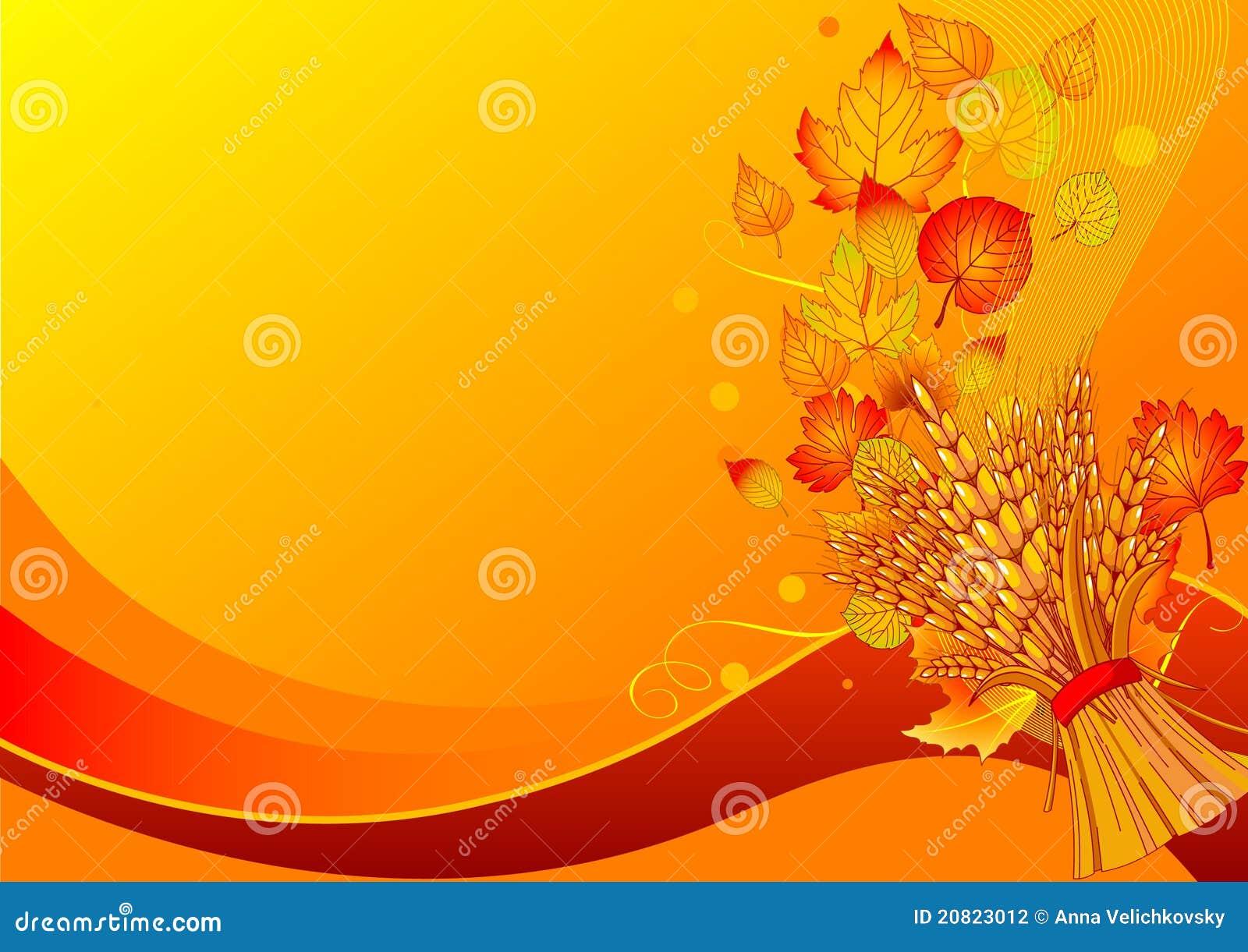 Harvest background Harvest Background