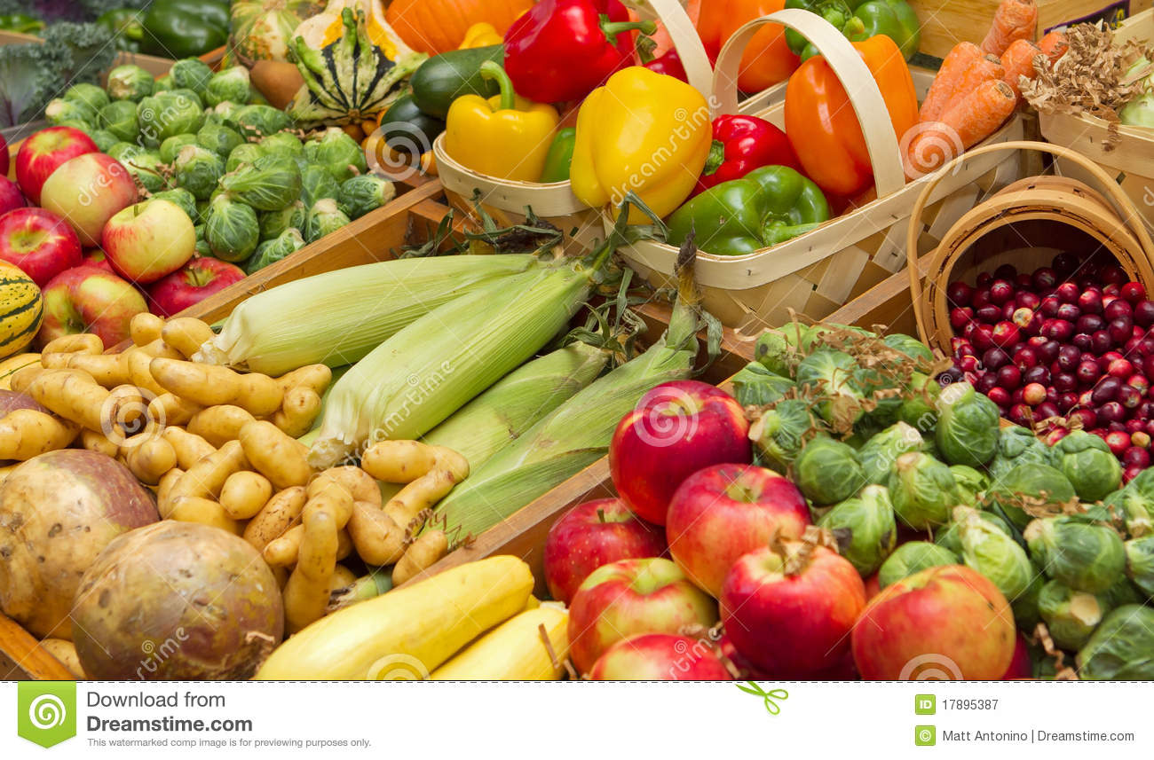 Harvest Foods Royalty Free Stock Photography - Image: 17895387