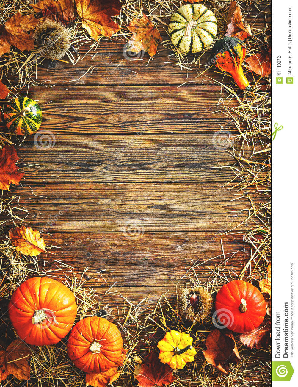 Download Harvest Or Thanksgiving Background With Gourds And Straw Stock Photo