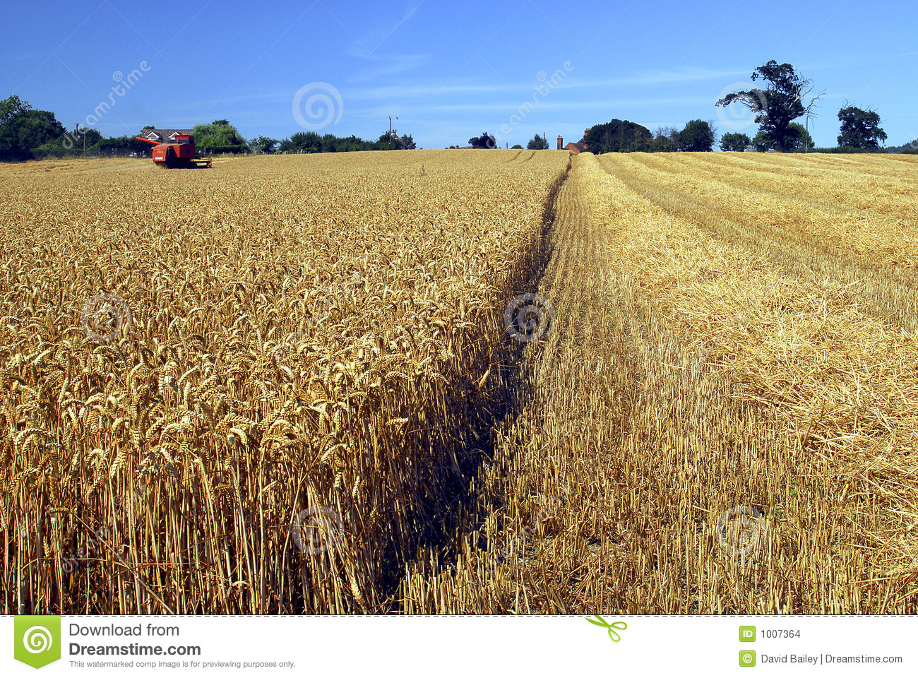 Download Harvest time stock photo. Image of wheat, farm, tractor - 1007364