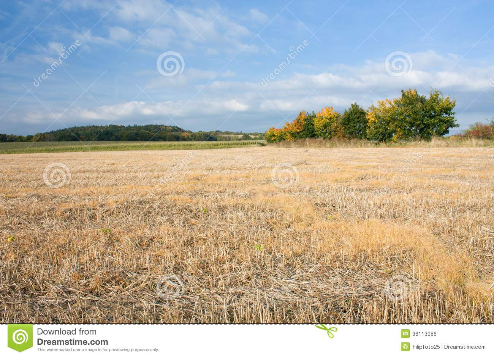 harvestad