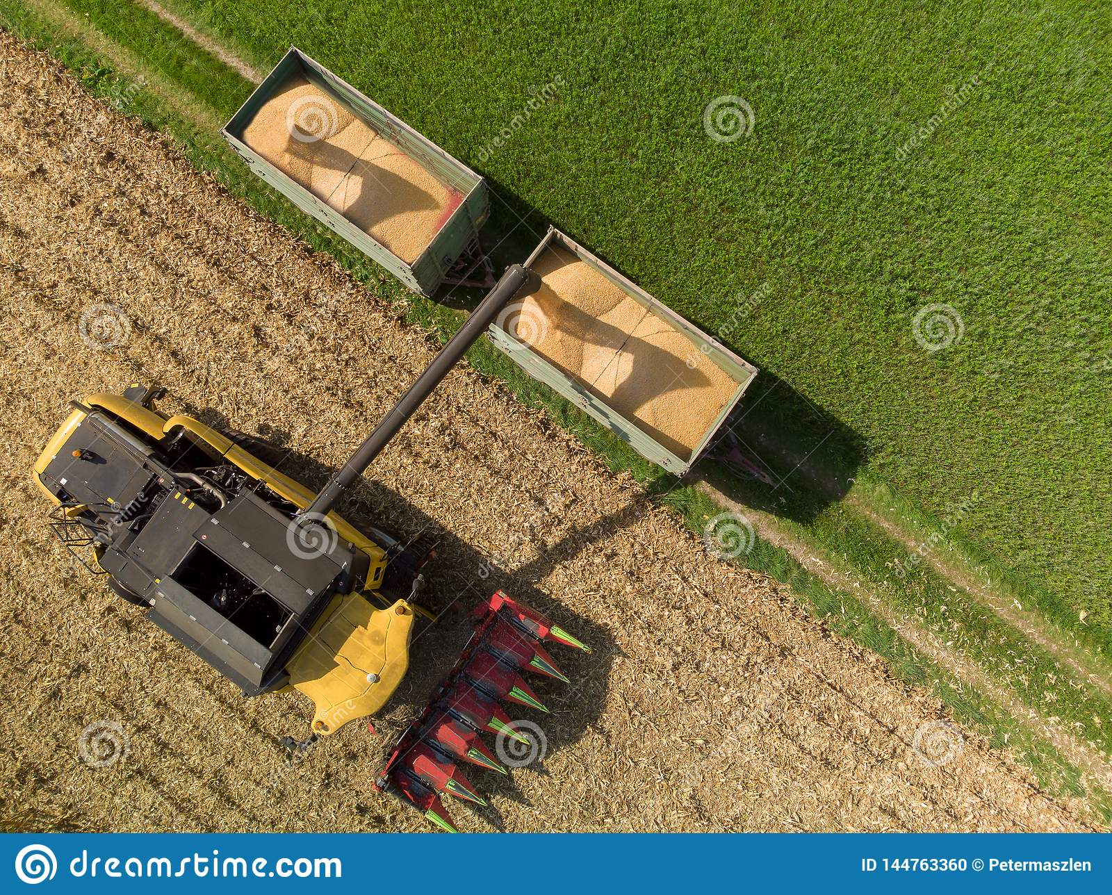 Drone view of harvester loading off corn on trailers