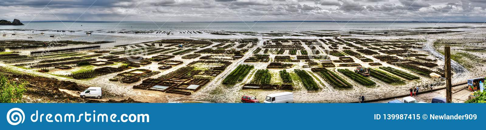 Panoramic view of oysters farm in Cancal, France