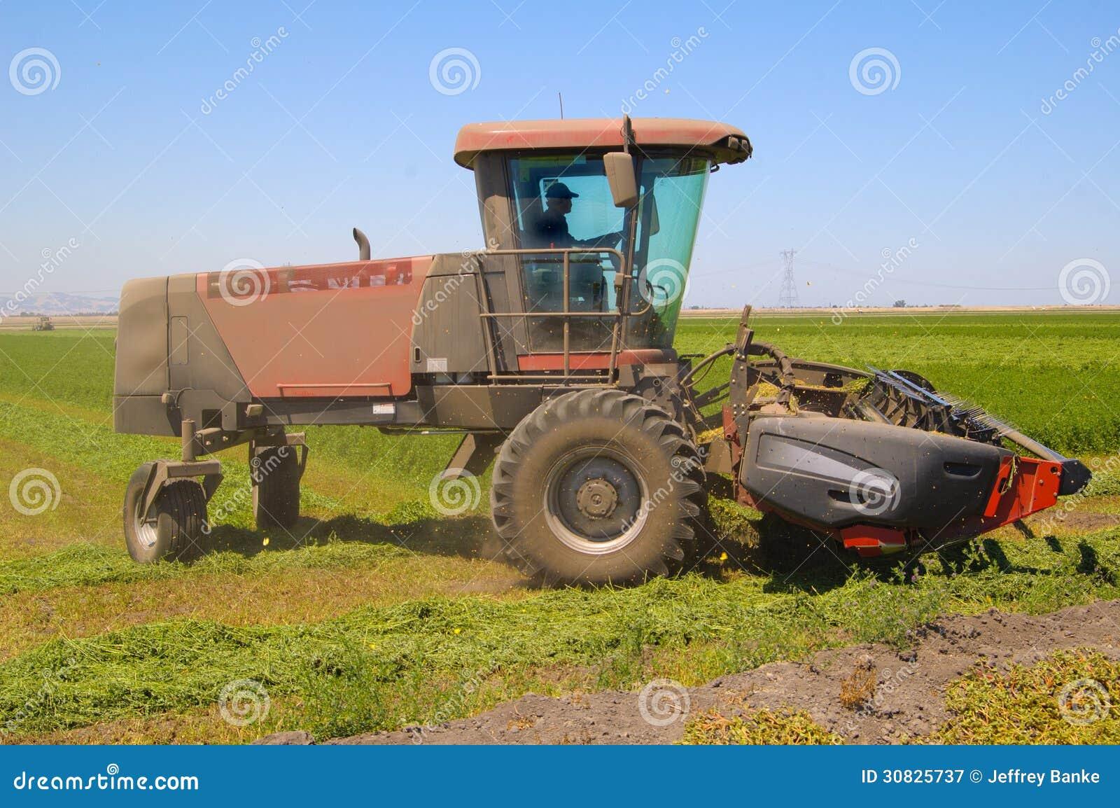 Harvet dell alfalfa