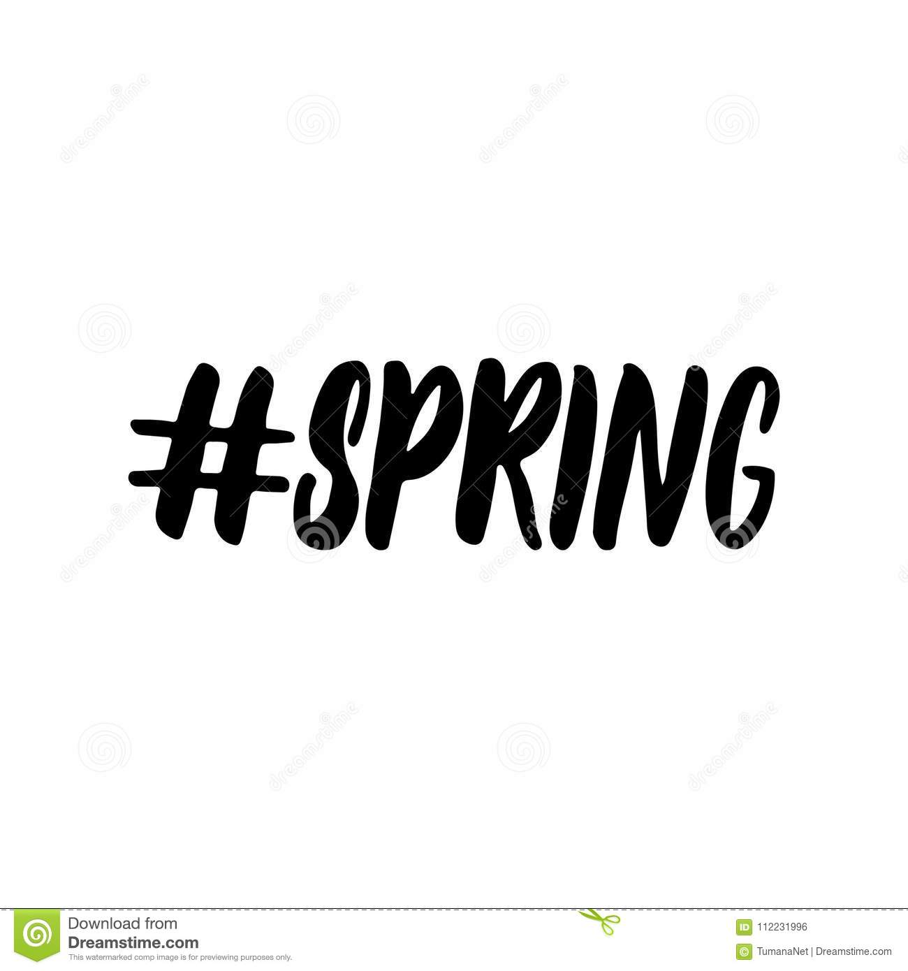 Hashtag spring hand drawn lettering calligraphy phrase isolated on the white background fun brush