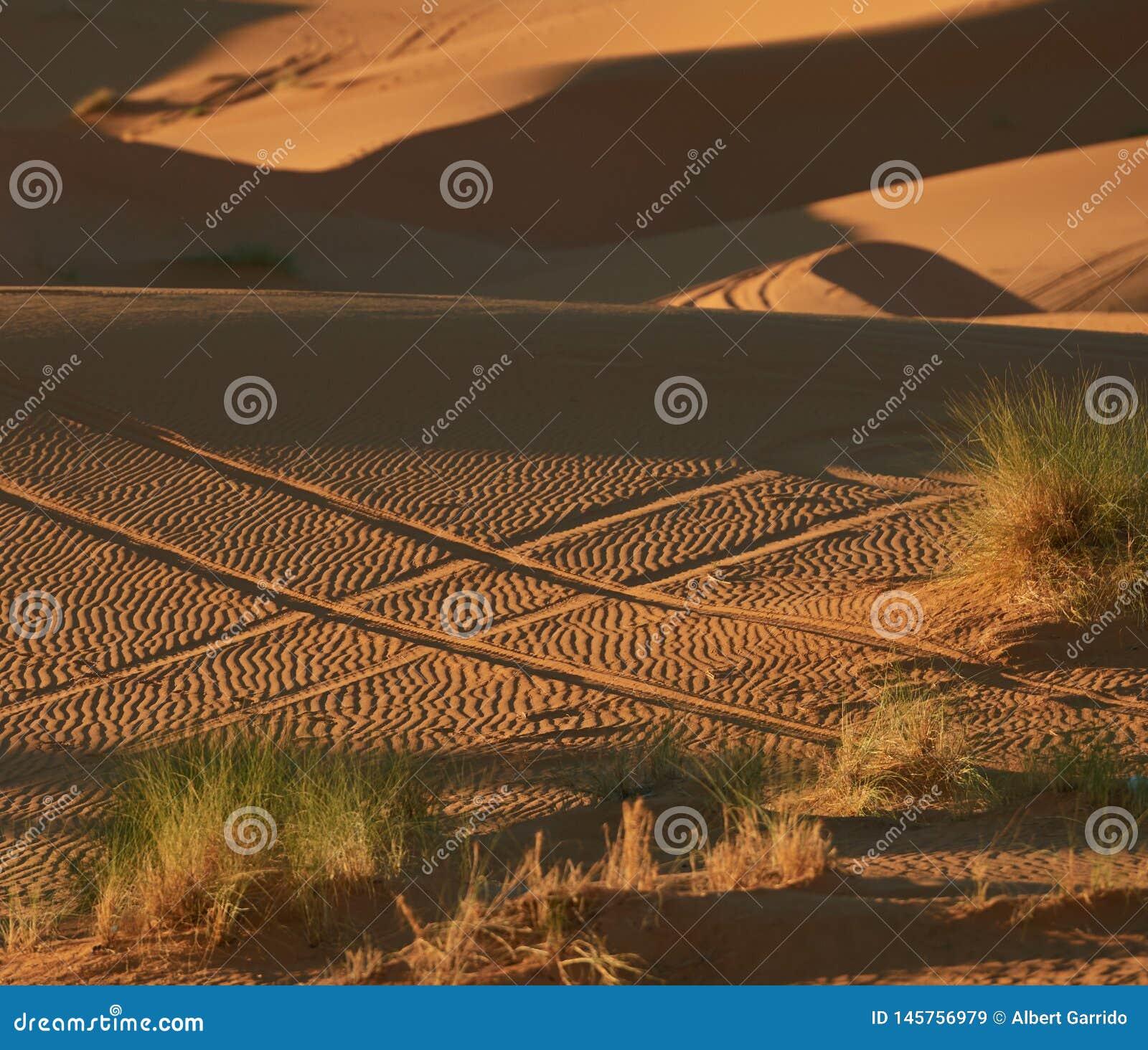 Hashtag w piasku robić z samochodowymi kołami