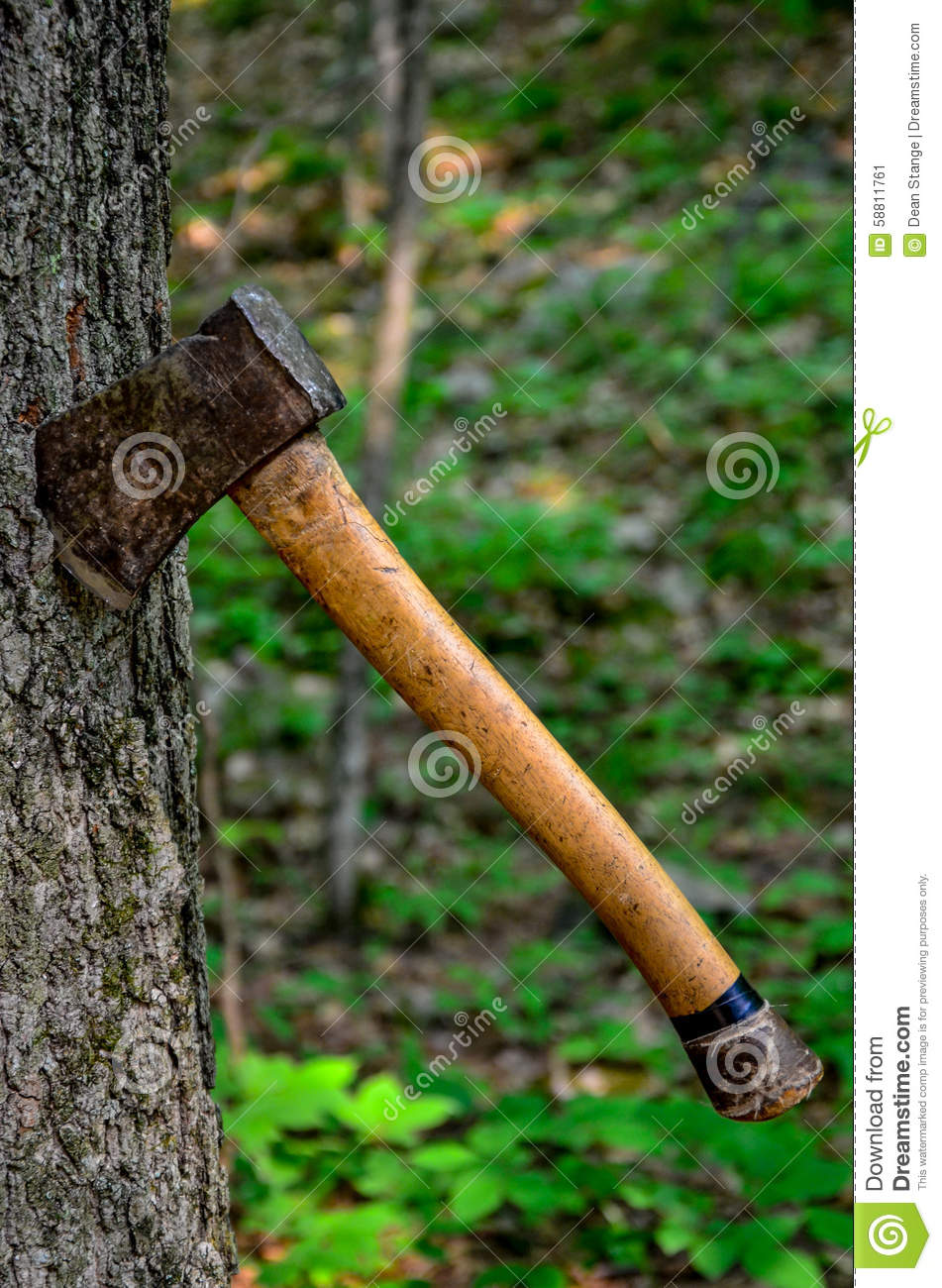 a hatchet stuck in a tree stock image image of scuffed 58811761