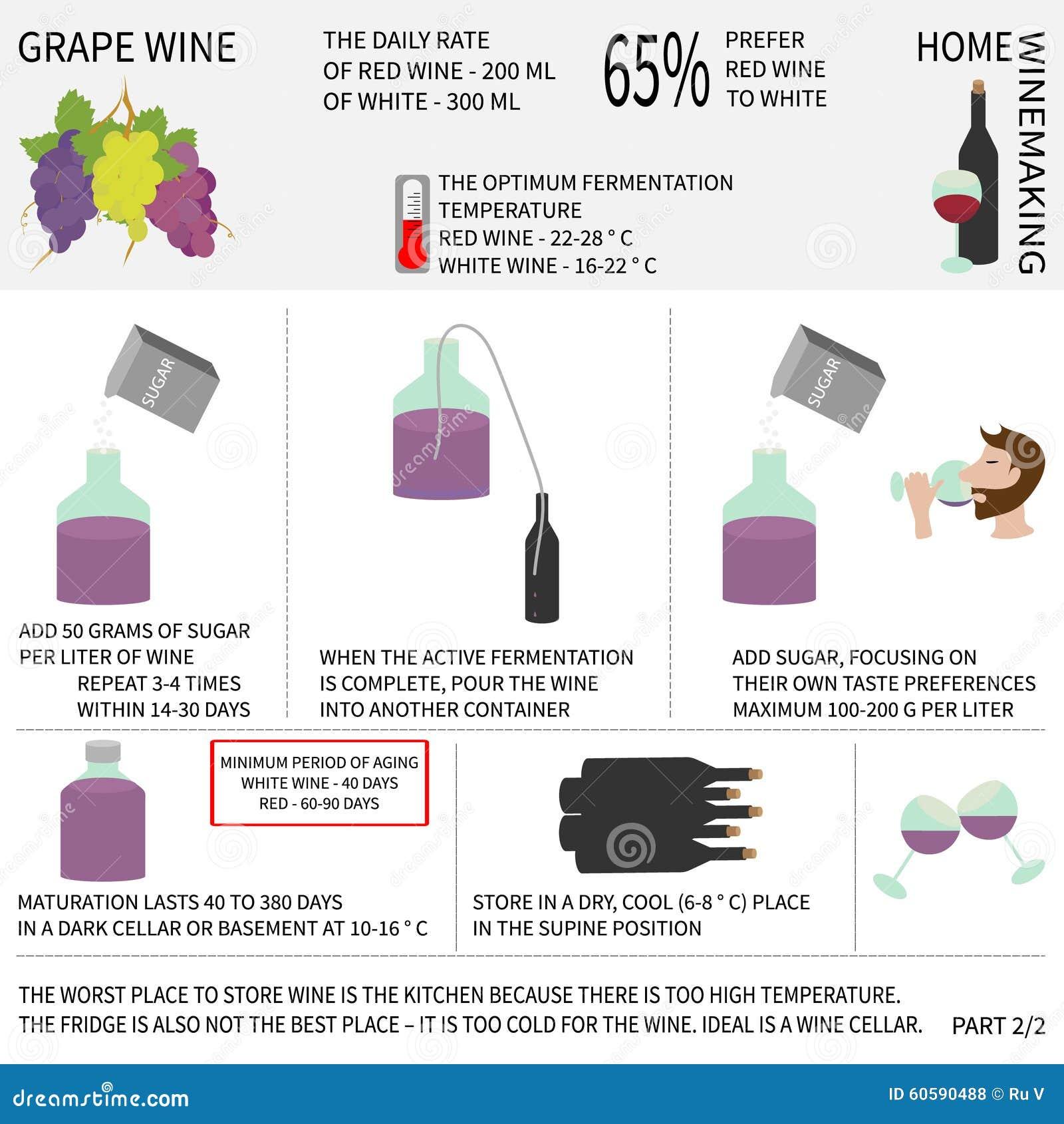 Hauptweinherstellung Wein Von Den Trauben Infographics