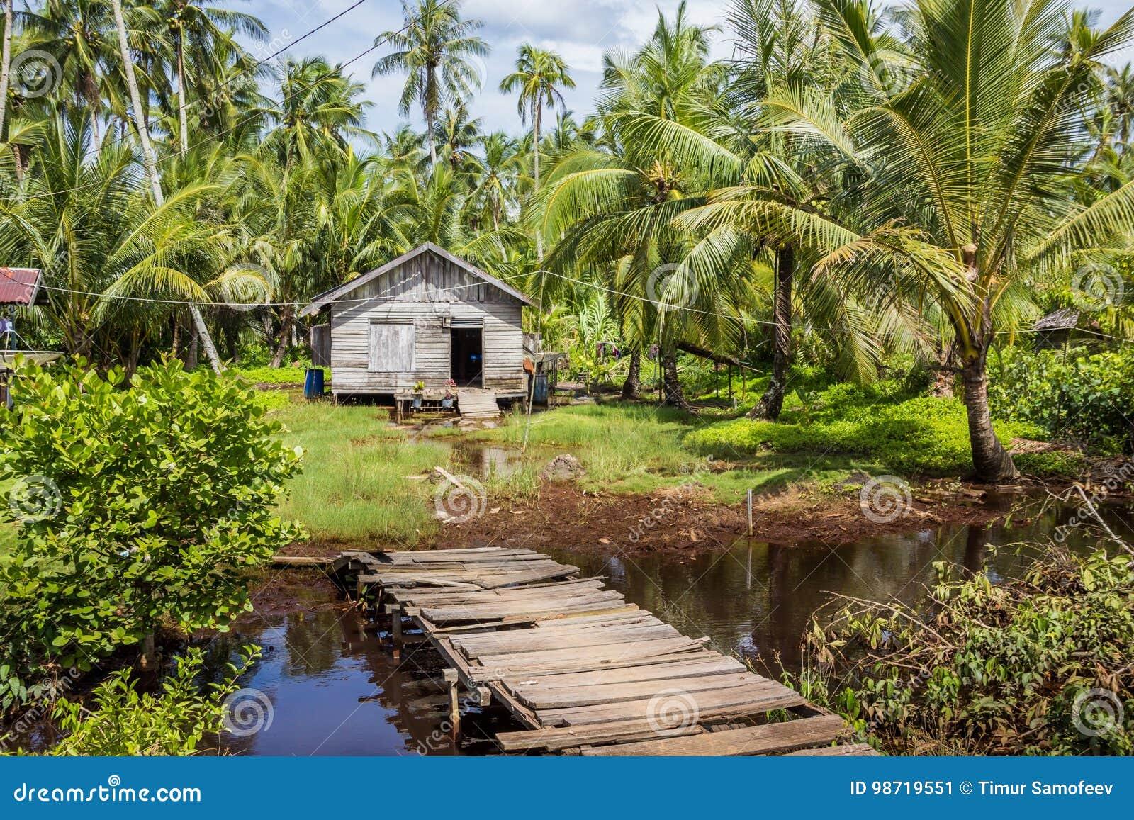 Haus Gemacht Vom Stroh Und Von Holz Umgeben Durch Palmen Am Sonnigen Tag